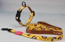 collar+leashes BO-1232